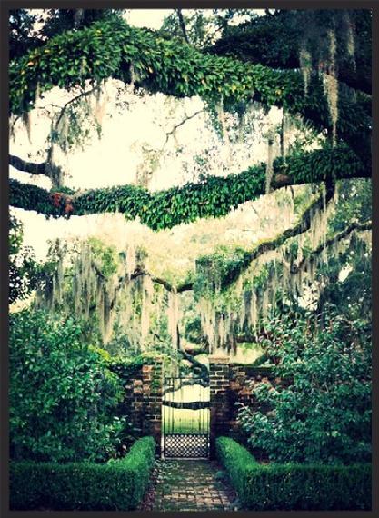 Fenwick Hall Plantation Grounds and Gardens